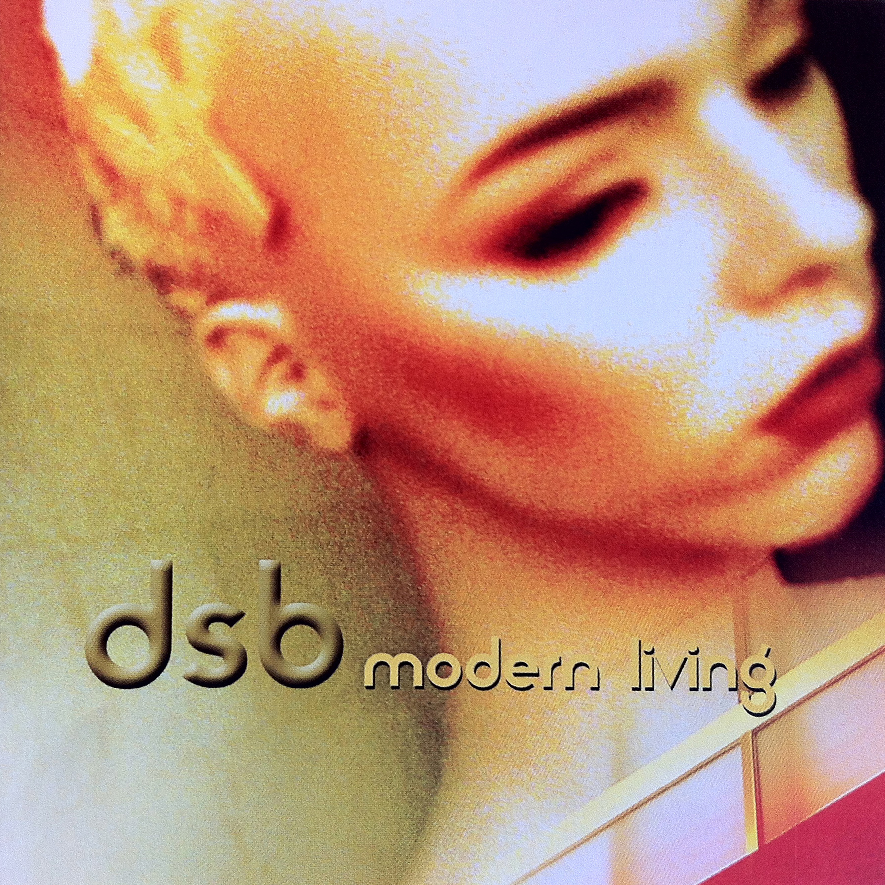 dsb_cover